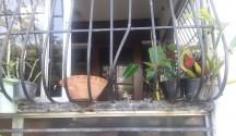 Esta vivienda y otras dos más fueron robadas por delincuentes en el Evaristo Morales.