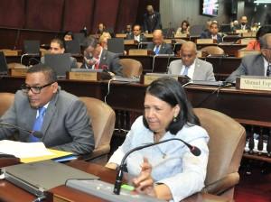 Diputados votaron en la sesión sobre proyecto de Código Civil.